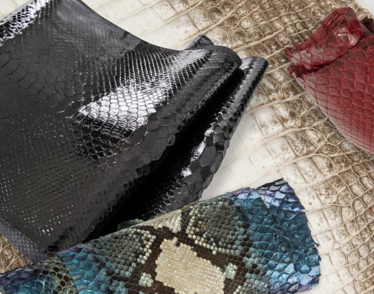 Python- und Krokodilleder schuhe gestaltung guidomaggi